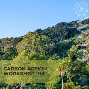 Carbon Action Workshop