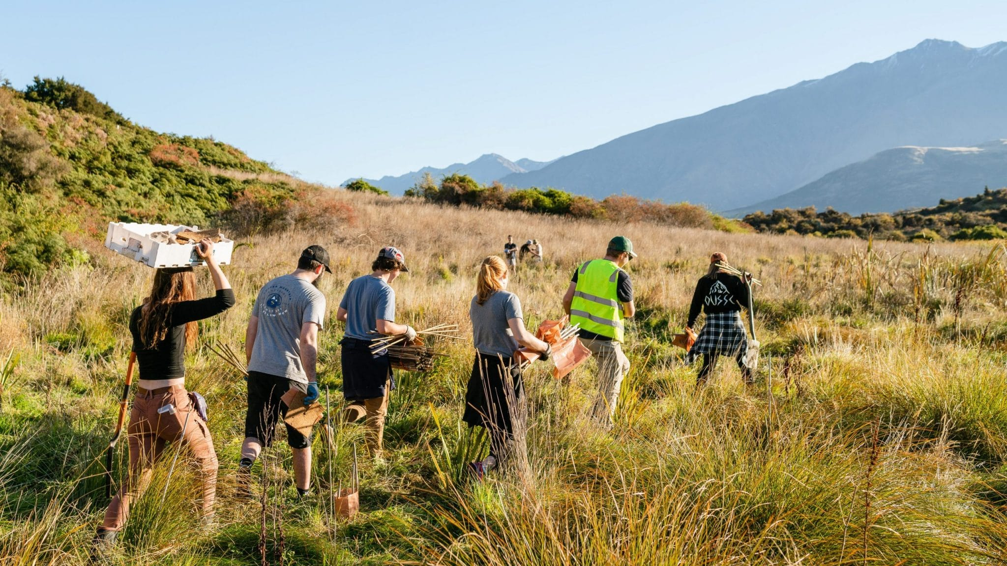 Volunteers walking to the planting site with planting equipment